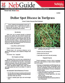 Dollar Spot Disease in Turfgrass