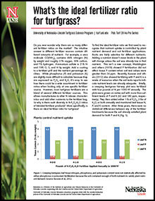 deal Fertilizer Ratio Turfgrass