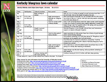 Kentucky Bluegrass Lawn Calendar