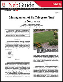 Managment of Buffalograss Turf in Nebraska