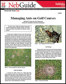 Managing Ants on Golf course pdf image