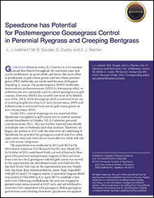 Speedzone has Potential for Postemergence Goosegrass Control in Perennial Ryegrass and Creeping Bentgrass